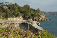 Watson Bay Sydney (3)