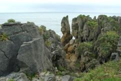 Zachodnie wybrzeże Nowej Zelandii (1)