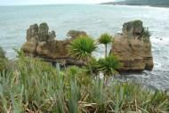 Zachodnie wybrzeże Nowej Zelandii (10)