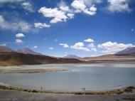 Laguna na pustyni w Boliwii (2)