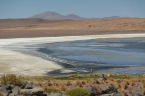 Laguna na pustyni w Boliwii (4)