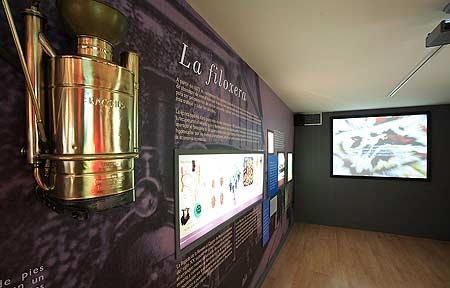 museo_areahistoria3