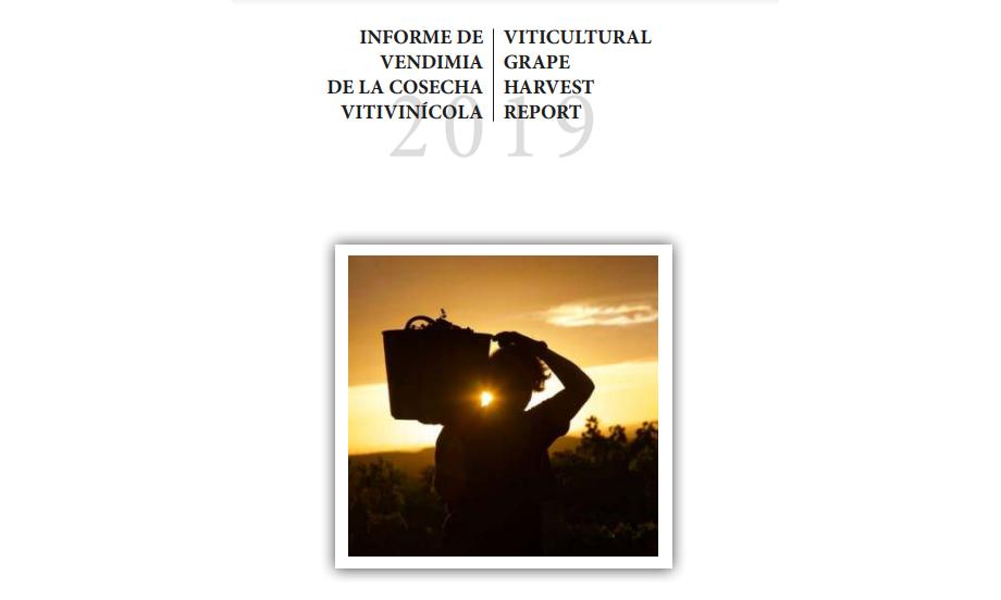 Informe de vendimia 2019