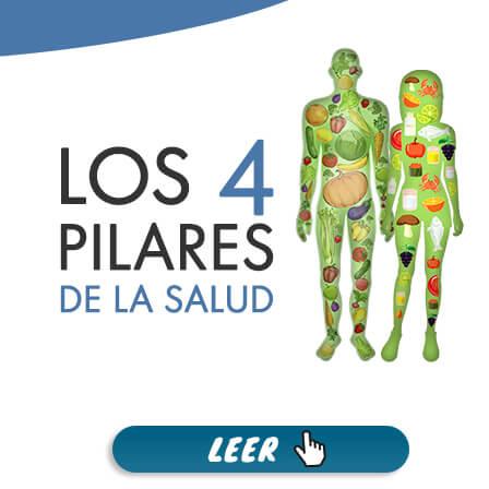 Los 4 Pilares de la Salud