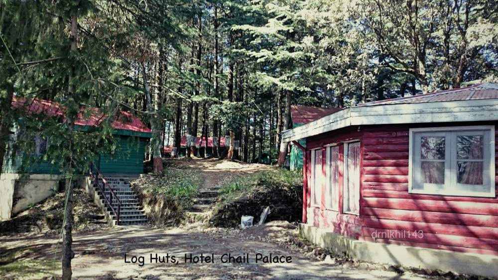 Road trip to Chail and Shimla (4/6)