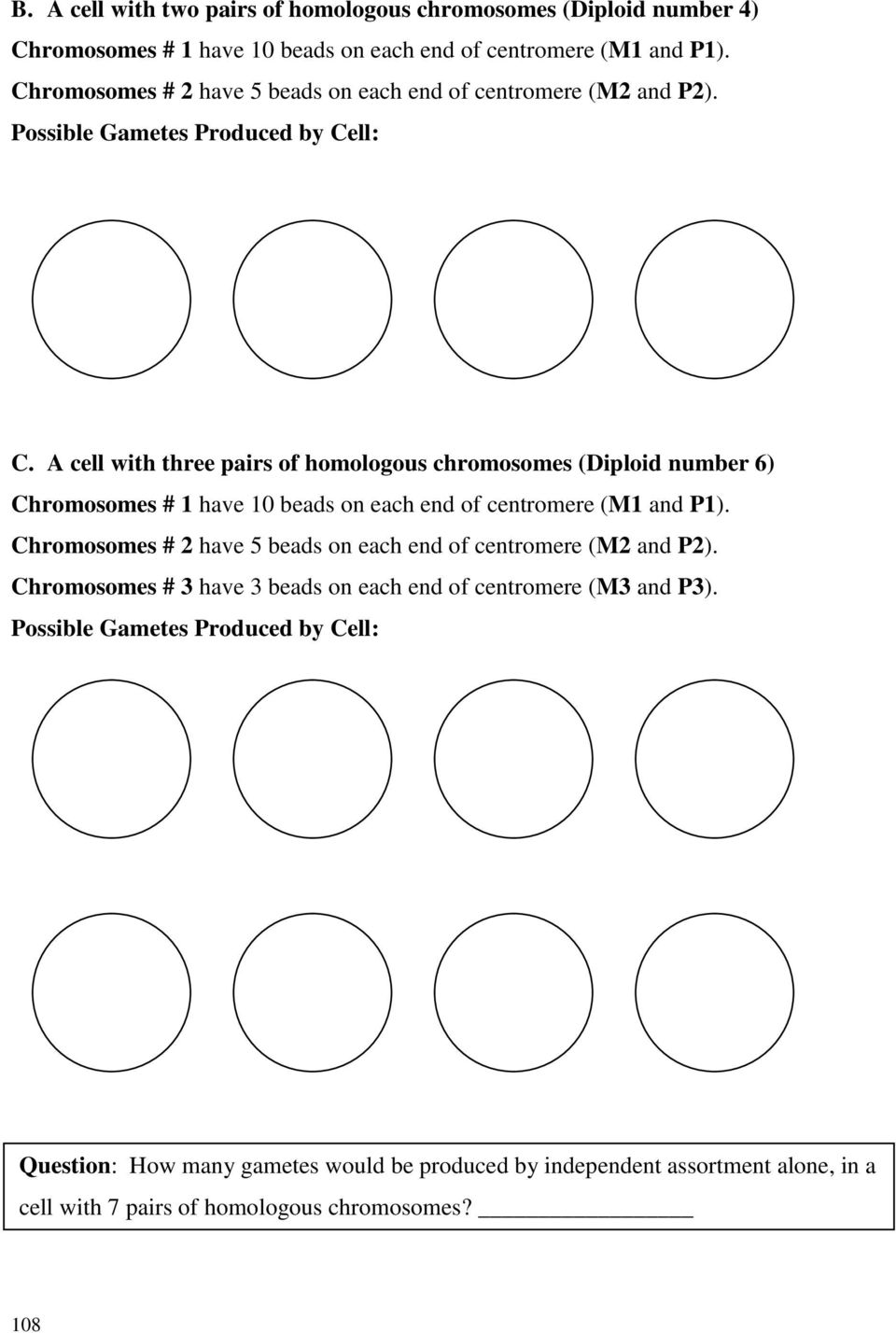 Moon Phases Worksheet Answer Key Matching