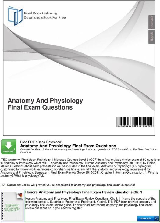 Luxury Anatomy And Physiology 1 Final Exam Questions Picture