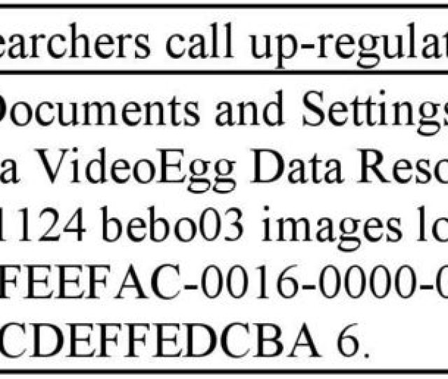 C Documents And Settings Laura Application Data Videoegg