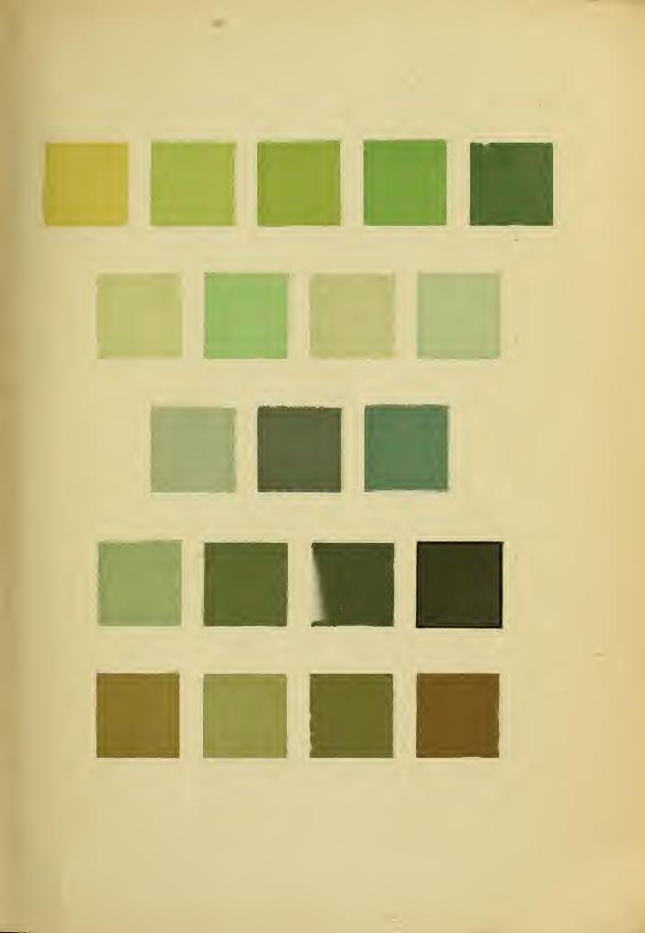 hl 61b4 c6c39 npm guide de couleurs 9 c colour guide pdf kostenfreier download