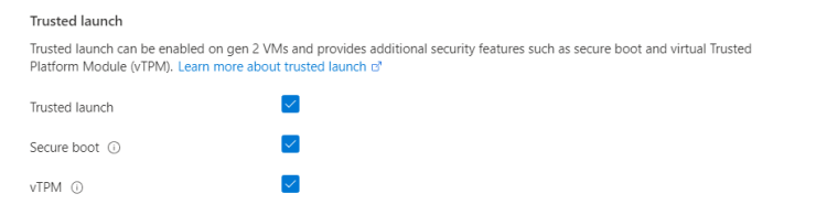 Screenshot showing the options for trusted launch.