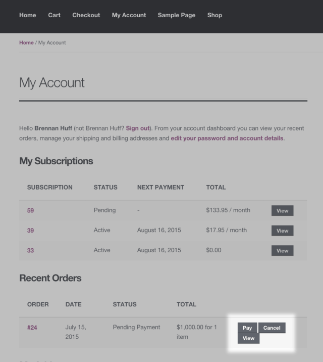 Pay Action on View Subscription Page