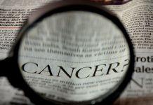 Se descubrió un tipo de pólipo difícil de ver en el cáncer colorectal (Foto: Pixabay)