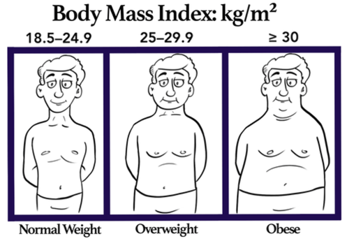 Body Mass Index Definition