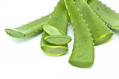 Aloe Vera bienfaits acidité gastrique