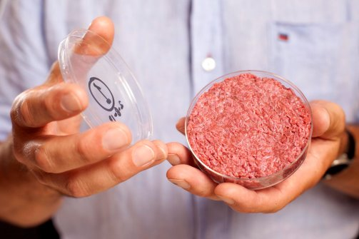 Steak-hache-artificiel-in-vitro