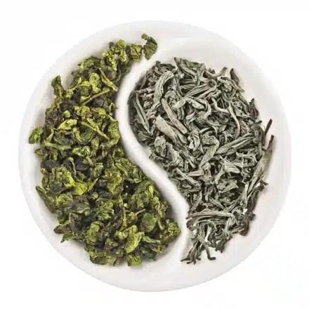 Le thé vert (à gauche) et le thé blanc (à droite)