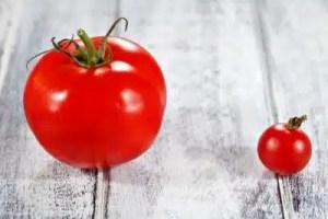 bienfaits de la tomate sante (6)