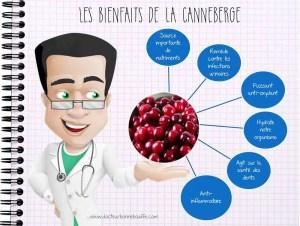 Les bienfaits de la canneberge cranberry
