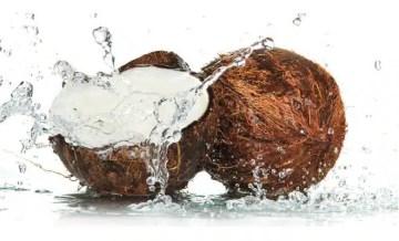 Noix de coco bienfaits santé