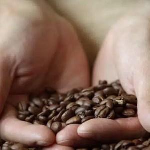 Les bienfaits du cafe