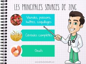 principales sources de zinc alimentation