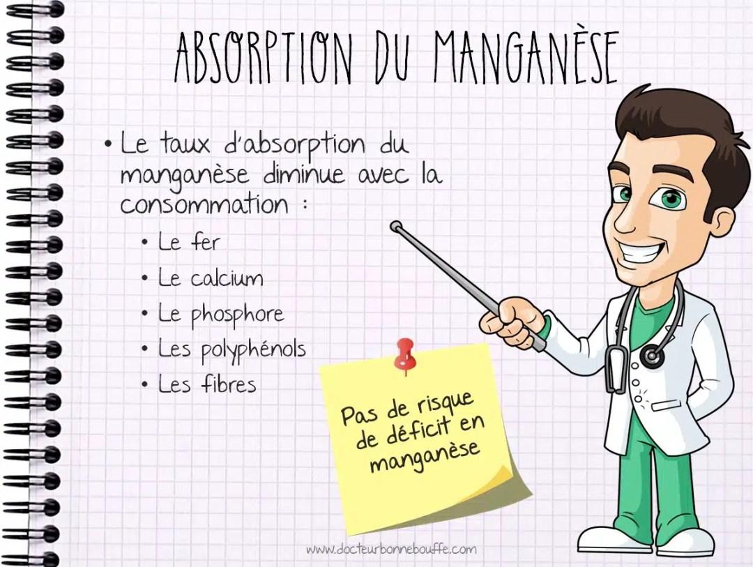 Absorption du manganese dans l'organisme