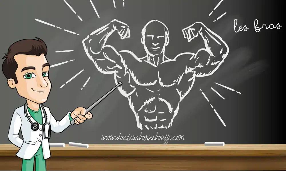Musculation : Comment travailler les bras