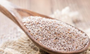 bienfaits psyllium blond