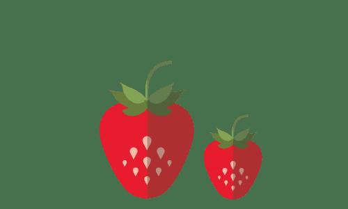 fraises saison