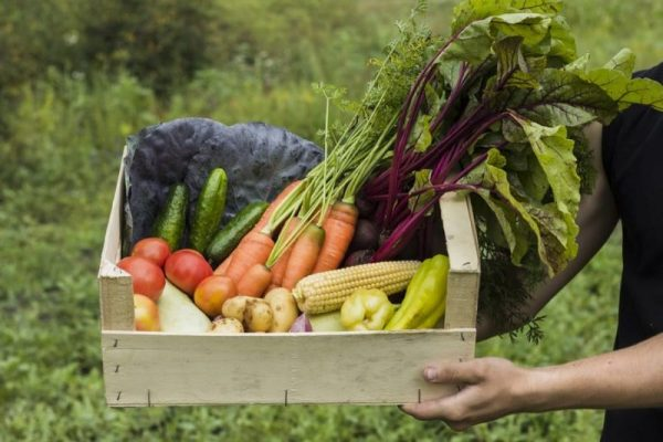 fruits et légumes locaux