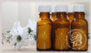 medicamento homeopatico tulancingo hidalgo mexico