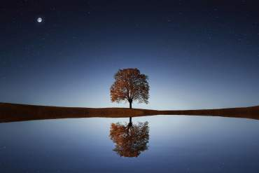 Reflection: Why and How?
