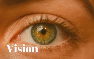 Vision Related Learning Disabilities