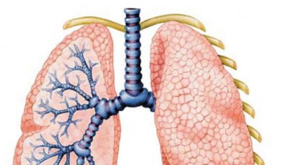 mortalitatea din varicoză