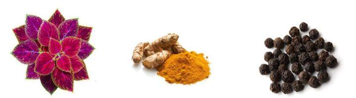Turma Slim ingredients