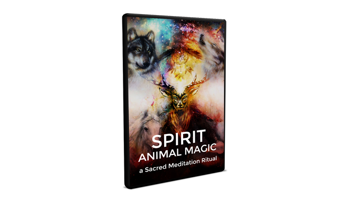 Cosmic Spirit Animal Review