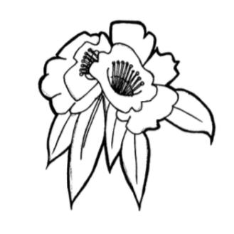 Laliguras Logo