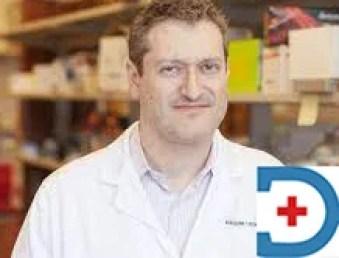 Dr Alexander M Lesokhin