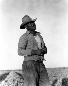 Man in Field, Imperial Valley, 1935