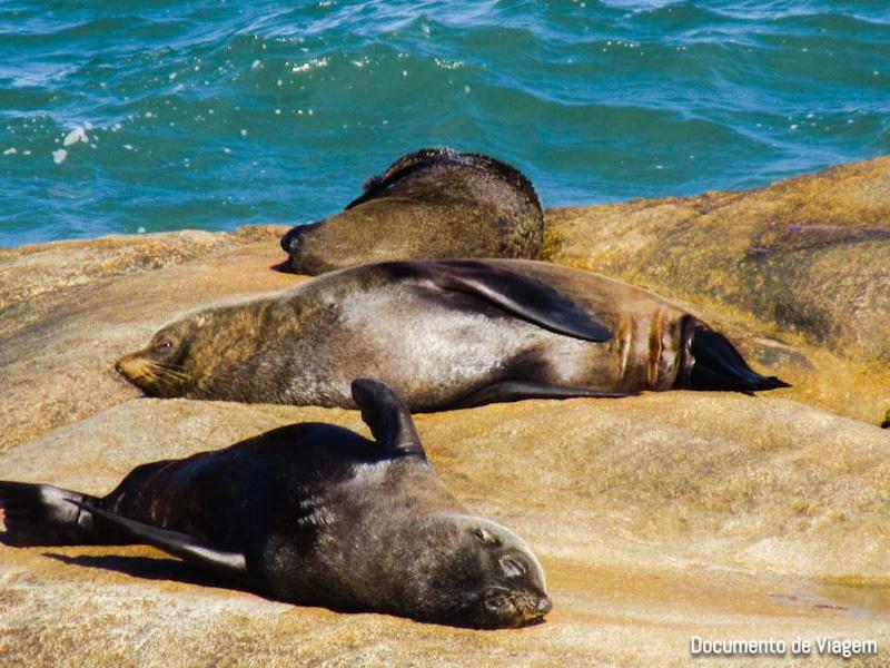Quantos dias em Cabo Polonio