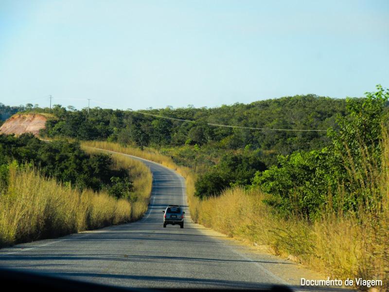 Estrada Palmas