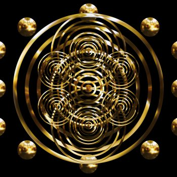 Rosen(gold)DoddaMaggy
