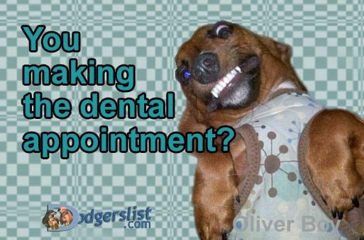 dentals.jpg?fit=513%2C339&ssl=1