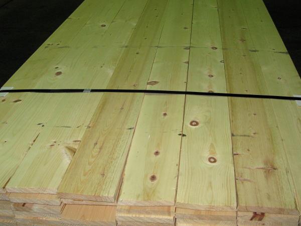 Sugar Pine