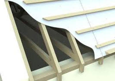 thatch-membrane