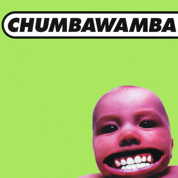 cds-_0001_bryan-chumbawumba