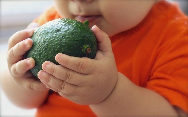 baby hapje avocado