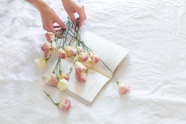 bloemen drogen oven magnetron boek