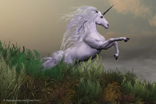 Lesson from the Unicorn
