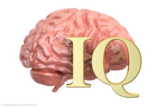 IQ and Intelligence